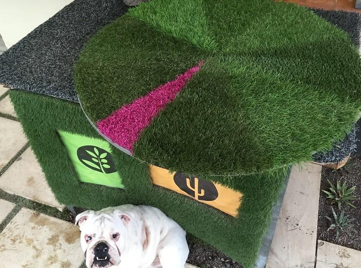 jardinerie p pini re sur aubagne jardinerie des jonquiers. Black Bedroom Furniture Sets. Home Design Ideas